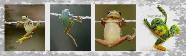 коллаж лягушка (2)