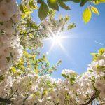 Пасха – день великой радости
