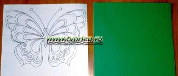 аппликация из бумаги бабочка (6)