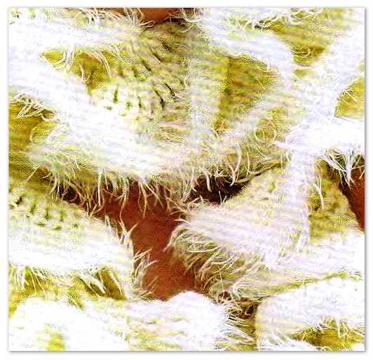 романтический шарф крючком (1)