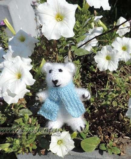 белый мишка на природе