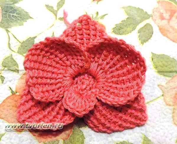 орхидея-крючком-простое-тунисское-вязание-22