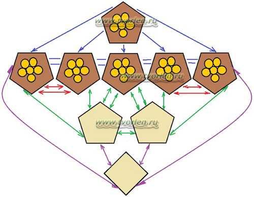 схема сборки головы