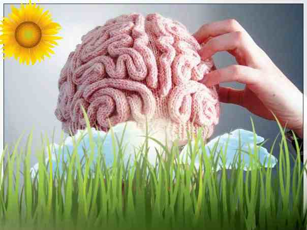 напряжём мозг