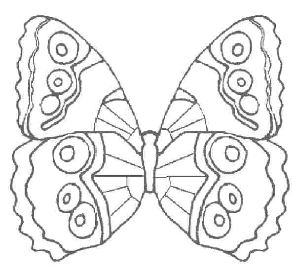 аппликация из бумаги бабочка (1)