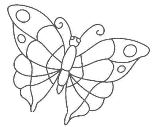 аппликация из бумаги бабочка (2)