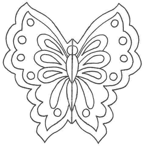 аппликация из бумаги бабочка (3)