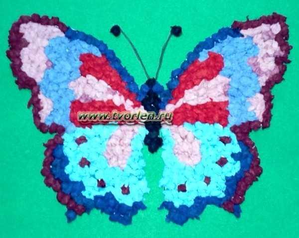 аппликация из бумаги бабочка (5)
