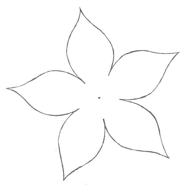 cvetok-puansettii-shablon