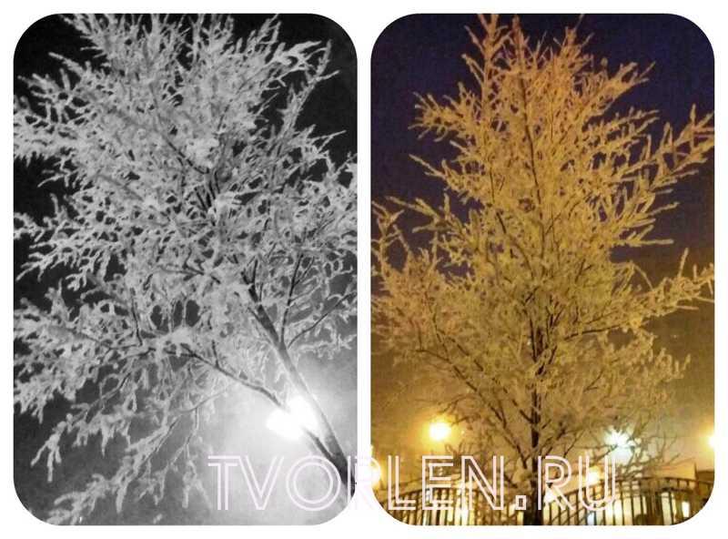 зима в Питере 2017-2018